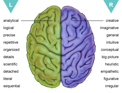 left-brain, right-brain personality